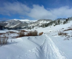 Skiing up the Valley