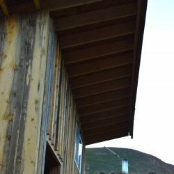 Woodshed Roof